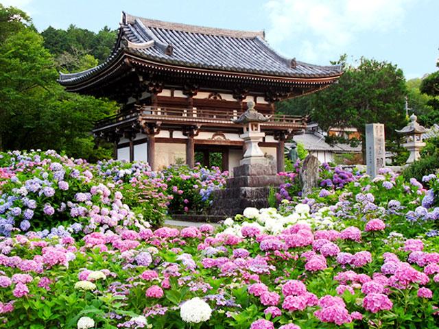 京都,丹州觀音寺