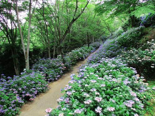 大阪,ぬかた園地