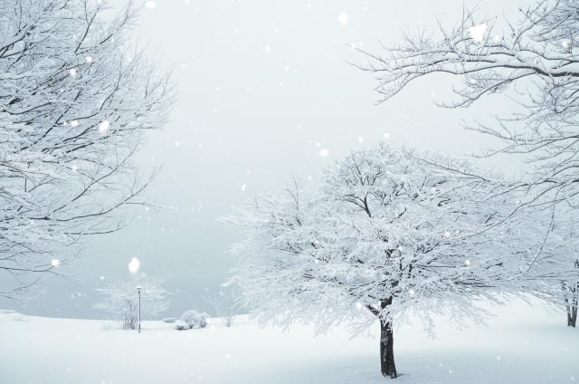 ヨガ冬の景色